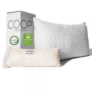 Coop Home Goods Best Hypoallergenic Pillow