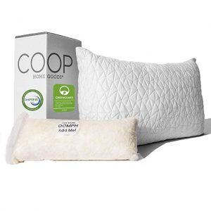 Coop Home Goods Best Memory Foam Pillow