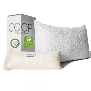 Coop Home Goods Best Pillow For Back Sleeper