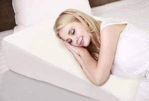 Silverback Wedge Pillow